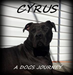 Cyrus1