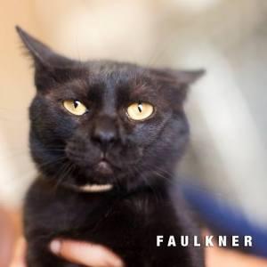 Faulkner3